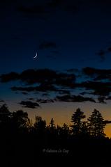 On dirait qu'on sait... (Fabrice Le Coq) Tags: nuit night blue bleu lune moon ombres suisse valais cransmontana fabricelecoqfoto