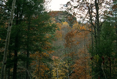 Red River Gorge, Kentucky (Roger Gerbig) Tags: fullframe roughtrail 35mm 135film slidefilm rxp fujichromeprovia400x canoneos3 canonef28105f3545 rogergerbig fallcolors autumn kentucky redrivergorge