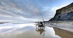 The Snow White Diner (pauldunn52) Tags: beach art environmental driftwood chairs whitmore stairs glamorgan heritage coast wales reflection paul