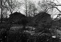 IMGP0481_DxO (heraldofstagnation) Tags: pentax k3ii sigma hsm art 1835 mm f18 kopli tallinn estonia abandoned decay desolation dxophotolab