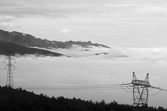 L1005080 (Sonsoles Huidobro) Tags: leicam10 elmarit24 landscape nieblas fog