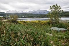 Nature around (BlossomField) Tags: landscape mountain saltstraumen nordland norwegen nor