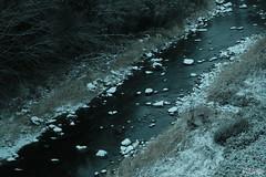 色彩を流れに手放す (atacamaki) Tags: xt2 xf f28 rlmoiswr fujifilm jpeg撮って出し atacamaki nofilter japan tochigi kuroiso river nature 50140 winter color chrome 那須