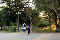 Last day of the year 2018 (a l o b o s) Tags: providencia santiago de chile sunset atardecer 31 december 2018 parque balmaceda couple love
