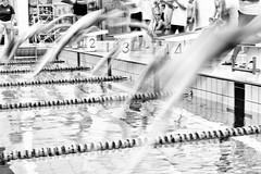 Brace for impact (kceuppens) Tags: inexplore explore swimming zwemmen wedstrijd contest nikond810 nikon d810 nikkor247028vr nikkor 2470 kids fun plezier sports sport antwerpen antwerp black white bw blackandwhite wit zwart zw