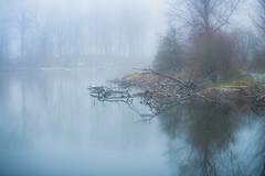 Tranquility is a choice (Ingeborg Ruyken) Tags: sneeuw morning empel grootewiel mist instagram 500pxs fog natuurfotografie ochtend flickr snow