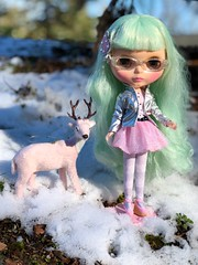 Taffy's friend, Sugar, has joined her on her outing, enjoying the fresh winter air together.  Cream Cheese is wearing Shibajuku Girls outfit and American Girl glasses. (Painters Life) Tags: pinkdeer deer shibajukugirls pink snow greenhair blythe takara creamcheeseandjam