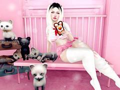 ♥♥♥ (♡♡ [[J E SSIE ]]♡♡) Tags: bossie cute catwa secondlife sl cat kitty maitreya fashion secondlifeposes yokai secondlifefashion kawaii cutegirl post lamb