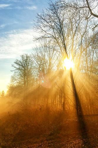 Sun shines through