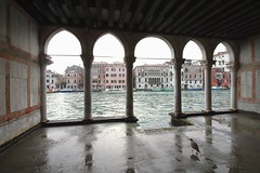 Venice (updownmo) Tags: water space bird animal humans form shape history reflection boats image photo buildings architecture composition frame moment curves lines view views frameview venice canonphotography angel magical lovevenice historicalarchitecture ancientbuildings beautiful nature heaven earth peaceful fresh location