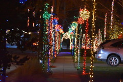DSC_4885 (earthdog) Tags: 2018 needstags needstitle nikon nikond5600 d5600 18300mmf3563 christmas decoration light christmaslight sanjose willowglen