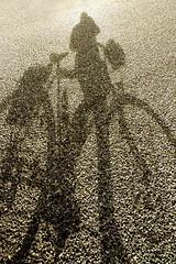 Selfie (Panasonikon) Tags: panasonikon nikonf80 kleinbild analog island iceland schatten shadow fahrrad bicycle selfie strase road