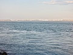Bridge - A25 (moacirdsp) Tags: bridge a25 ria de aveiro lagoon from costa nova do prado ílhavo distrito portugal 2018