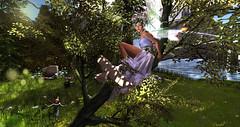 CONTEST ENTRY #1 (SL Name: Delalunallena) Tags: irrisistible fantasy fairy spring elfe mesh dress outfit sl secondlife