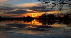 Sunset across a flooded Tealham moor... (Cosper Wosper) Tags: flood sunset tealham somerset levels