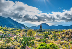Tenerife (etoma/emiliogmiguez) Tags: tenerife islascanarias oeste cactus almendros atlántico gomera nubes las manchas