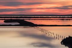 Salinas (Miguel Martin Ibiza) Tags: redsky skyporn sky photography tamron nikon d750 photographer water winter red sunset atardecer ibiza baleares love