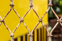 The power of positive thinking (A Different Perspective) Tags: bali seminyak diamond fence green join link rust wall wire yellow