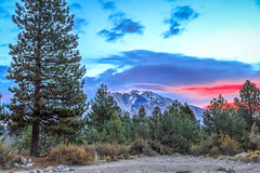 Morning Light Over Mount Shasta (http://fineartamerica.com/profiles/robert-bales.ht) Tags: califorina fineart flickr haybales land people photo photouploads places states sunsetorsunrise landscape mountain snow peak nature scenic sky california forest travel outdoor mount beautiful sunrise shasta volcano winter blue vacation mountains mountshasta trees green range tree mtshasta cloud panoramic scenery cascade clouds summit view cascademountains cascades siskiyoucounty cloudssky glacier hiking morning holymountain interstate5 northamerica landmark siskiyou wilderness volcanos peaceful whitemountain robertbales