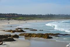 DSC_0246 (afagen) Tags: california pacificgrove asilomarstatebeach montereypeninsula asilomar beach pacificocean ocean
