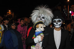 006 (morgan@morgangenser.com) Tags: westhollywood halloween 2018 weho carnival costumes crazy funny bizarre sexy naked lingerie donaldtrump stormydaniels photobymorgangenser scarytights exposing flashing photographers colorful lgbt dressingup dessingdown
