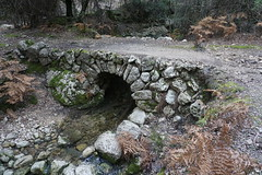 "cuber arqueologic R23 <a style=""margin-left:10px; font-size:0.8em;"" href=""http://www.flickr.com/photos/122939928@N08/31134544517/"" target=""_blank"">@flickr</a>"