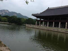 """korea-2014-photo-jul-02-9-02-45-pm_14624704046_o_27153954867_o • <a style=""""font-size:0.8em;"""" href=""""http://www.flickr.com/photos/109120354@N07/31239415507/"""" target=""""_blank"""">View on Flickr</a>"""
