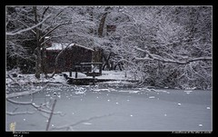 A woodhouse at the lake in winter (d.v.g) Tags: bosquedelosfinlandeses winter bosque lago cabin rascafria cabaña snow tree invierno lake spain arboles frozen forest house woodhouse ice madrid nieve helado hielo snowing