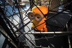 台場|Odaiba (里卡豆) Tags: olympus panasonicleicadg818mmf2840 asia panasonic leica dg 818mm f2840 penf japan tokyo 東京 日本 minatoku tōkyōto jp