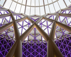 King's Cross Station 4 (benjaminjohnson1983) Tags: 2018 abstract architecture blue concourse curves dynamic flickr flickrjohnmcaslanpartners kingscross kingscrossstation lines london londonkingscrossstpancras2018 purple spiral roof