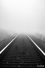Way to the Unkown (Tone colour) Tags: 70d autumn tamron foggy monochrome rails abstract misty railway canon blackandwhite 90mm fog