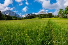Toggenburg (olle.graf) Tags: 2018 olle alpstein berge fluss fujifilm may mountain river schnee schweiz snow switzerland sã¤ntis thur toggenburg unterwasser xe2 altsanktjohann sanktgallen säntis