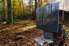 _FLX3988p (Félix Pérez Antón) Tags: pentax k3ii ucieda bosque cantabria otoño parquenaturalsajabesaya naturaleza