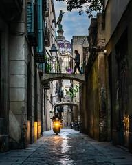 Carrer pintorec (Ramon InMar) Tags: barcelona barrigòtic oldtown oldquarter