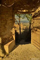 San Gimignano (i-lenticularis) Tags: sangimignano tuscany winter fdts35f28 altlens manuallens a7r italy slightlycropped