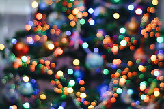D048A8B44 (millenks) Tags: christmas festive xmas newyear bokeh colors colorful nikon nikond90 nikkor 50mm light lights blur wallpaper wallpapers