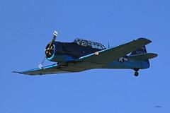 North American T 6G-1-NH Texan n° 182-74 / 51-14387  ~ F-AZEF / 14387 / 51-14387 (Aero.passion DBC-1) Tags: spotting lens 2010 airshow dbc1 david biscove aeropassion avion aircraft aviation plane north american t6 texan 5114387 ~ fazef 14387