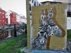Cee Pil / Prinsenhof - 19 jan 2019 (Ferdinand 'Ferre' Feys) Tags: gent ghent gand belgium belgique belgië streetart artdelarue graffitiart graffiti graff urbanart urbanarte arteurbano ferdinandfeys