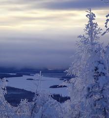 January in the Tanana Valley (Katy on the Tundra) Tags: january winter tananavalley taylorhighway