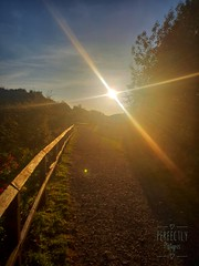 sunset over the canal path (perfectlyplatypus) Tags: sunset canal bridge yellow flare natural evening pebbles