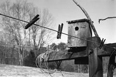 Clothespins (lancekingphoto) Tags: clothesline clothespins birdhouse country farmlife tennessee thesouth minoltaxgm minoltamd45mmf2 kodaktmax400 35mm expiredfilm xtol