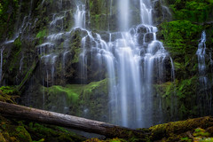 Proxy (Stacy Brantley Photo) Tags: proxy oregon willamette falls cascades longexposure waterfall