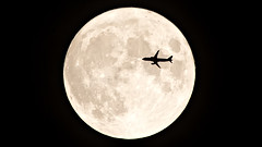 Easyjet A320 crossing the moon (PH-OTO) Tags: air aircraft airline airlines airplane airport avgeek aviation aviationdaily aviationgeek avporn canon civil eos fighter fighterjet flight fly force general helicopter jet military photo photography photos pilot plane planespotting private sky spotting moon mooncrosser mooncrossing a320