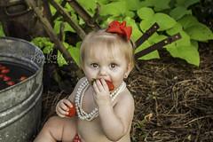 (Lyn Ross Photography LLC) Tags: photography fruit bath strawberry baby children portrait outdoors garden