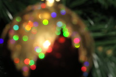 Christmas colors (Alfredo Liverani) Tags: macromondays macro mondays closeup mm hmm italy pov dof holidaybokeh canong5x canon g5x pointandshoot point shoot ps flickrdigital flickr digital camera cameras 3582018 project365358 project36512242018 project36524dec18 oneaday photoaday pictureaday project365 project project2018 2018pad