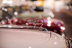 Austin Badge (--Kei--) Tags: nikon d810 nikkor 50mm f12 50mmf12 nikon50mmf12ais ais haynes haynesmotormuseum haynesmuseum car cars vehicles emblems badges sparkford