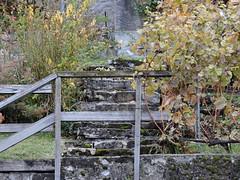 DSCN8112 (keepps) Tags: switzerland suisse schweiz vaud brent fall autumn stairs