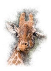 Giraffe Portrait #2 (Patti Deters) Tags: giraffe head portrait vertical white fourlegs savanna big orange mammal goofy ears silly brown tan spots horns tall animal giraffa giraffidae camelopardalis tallest tropical africa safari zoo funny comedy comical chewing goofygiraffe pattideters digitalart