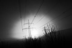Power to the people (stefankamert) Tags: powertothepeople energy lines electricity mood grain landscape ricoh ricohgr gr grii noir noiretblanc blackandwhite blackwhite stefankamert fog sky dark light gras surreal abstract