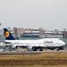 Frankfurt Airport: Lufthansa Boeing 747-830 B748